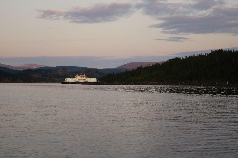 Lachszucht in Norwegen
