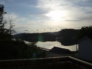 Einmaliger Blick auf den Fjord vom Balkon in dem Ferienhaus in Norwegen